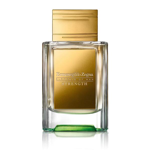 strength-ermenegildo-zenga-elements-of-man-eau-de-parfum-man-for-himself