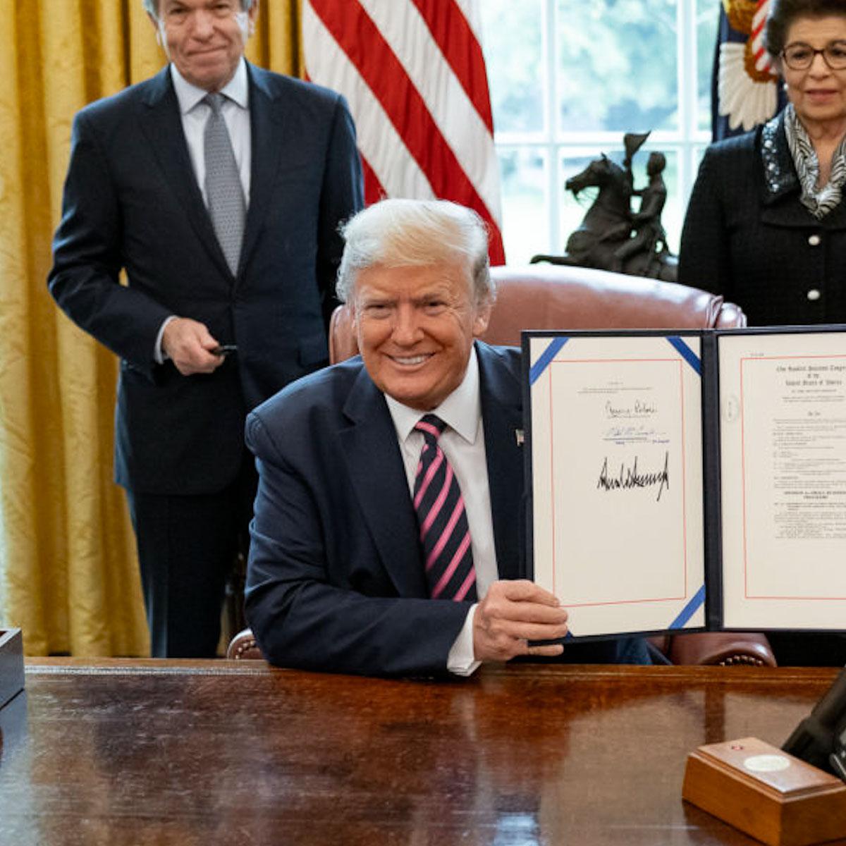 donald-trump-american-president-hair-hairstyle-mens-hair-loss-grooming-man-for-himself-2