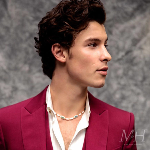 shawn-mendes-hairstyle-grooming-styling-celebrity-curly-hair-man-for-himself-2